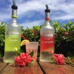 Cruzan Strawberry Lemonade